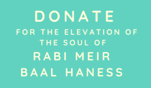 Donate for the elevation of the soul of Rabbi Meir Baal Haness