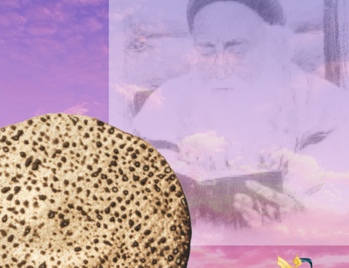 Rabi Meir Baal HaNes' Hilula  Cabalistic Pesach Sheni