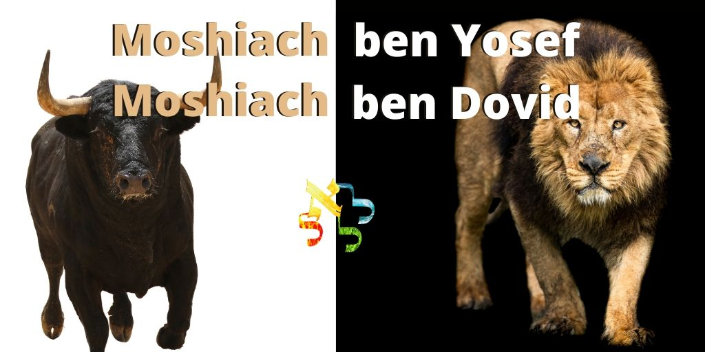 Mashiach ben Yosef Mashiach ben Dovid